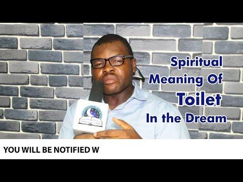 SPIRITUAL MEANING OF TOILET DREAM - Evangelist Joshua TV