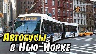 АМЕРИКА Как отличать автобусы в Нью Йорке