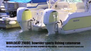 WORLDCAT 290DC- Bowrider, Sports-Fishing, Power Catamaran FOR SALE IN AUSTRALIA