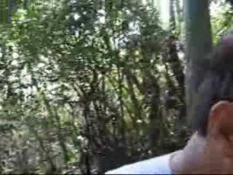 Mountain Team 毅行者07; 完美句號 Yahoo! Video