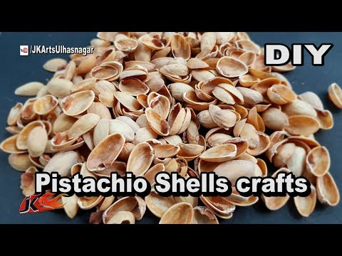 Pistachio Shells crafts | Best out of waste | Home Decor | JK Arts 1360