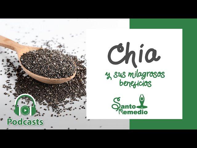 Chía y sus milagrosos beneficios - Santo Remedio Panamá.