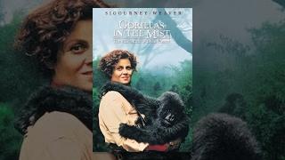 La Grande Cause des Primates : Les GORILLES  Poster_wide