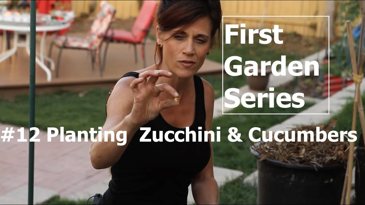 First Garden #12 - Planting Zucchini and Cucumbers and Easy Trellis ...