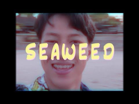 SEAWEED - 26Percent (official MV)