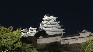 Senhime Peony Garden at night, Himeji Castle,Japan(夜の姫路城 千姫ぼたん園)Full HD