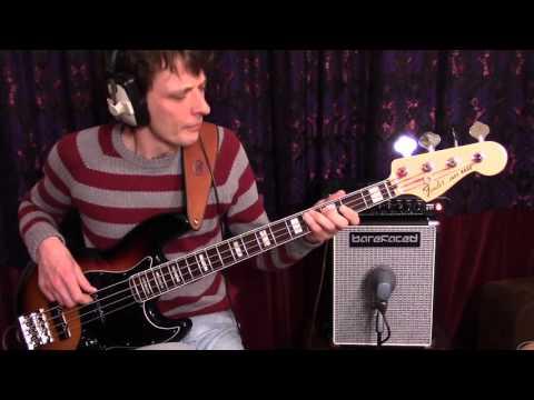 Adrienne & Adrianne - Vulfpeck - Bass Cover