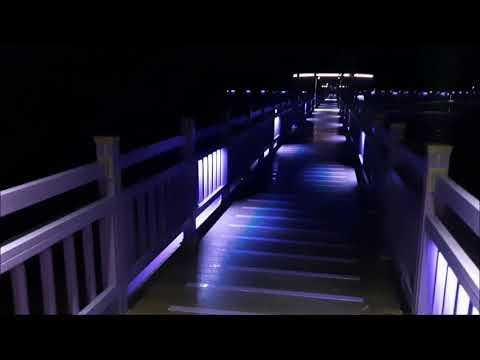 보라색섬 퍼플섬 퍼플교 야경 신안군여행시 참조