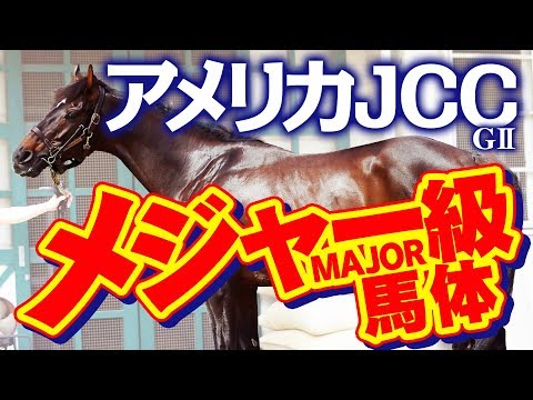 【AJCC】馬体で穴馬候補を絞る!元大手牧場スタッフのイチオシ馬体!重賞フォトパドック アメリカジョッキークラブカップ 2020【競馬 予想】