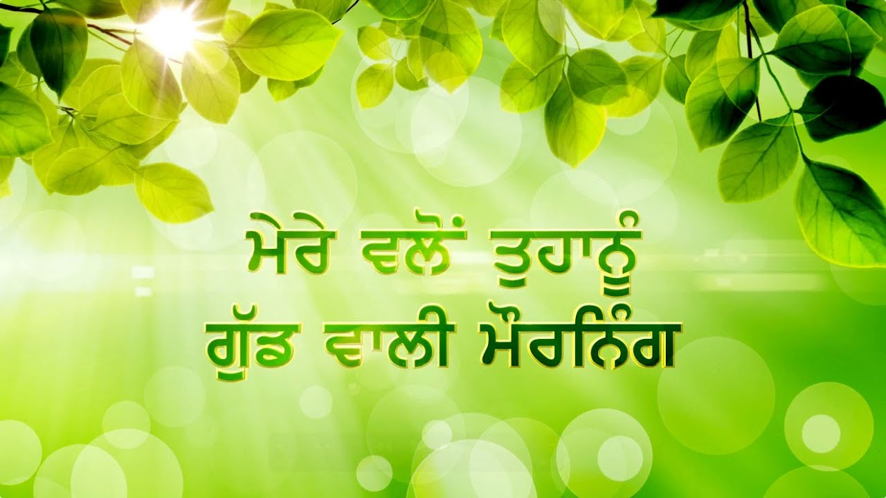 Good Morning Wishes In Punjabi   Punjabi Good Morning Whatsapp Status Video