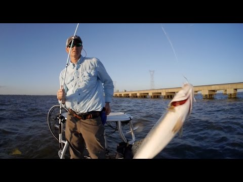 Using The Water Level Gauge To Target Trout In Lake Pontchartrain