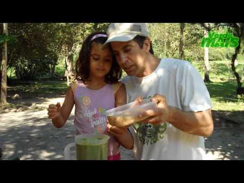 Suco verde com Dr. Alberto Gonzalez