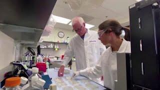 Novavax starts Phase 1 clinical trial of coronavirus vaccine candidate