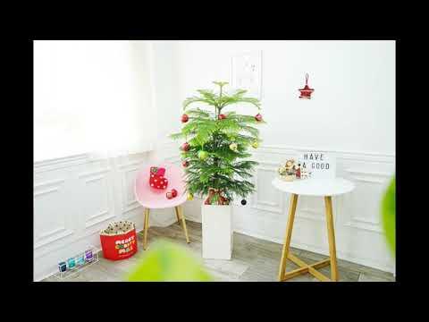 크리스마스트리 추천 대형 카페 매장 가게 인테리어 장식 소품 무한감동 생화 화분