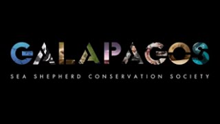 Sea Shepherd Galapagos documentary trailer