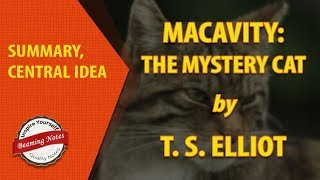 Line by Line Summary of Macavity the Mystery Cat by TS Elliot