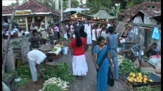 2009 Wennappuwa market Sri Lanka