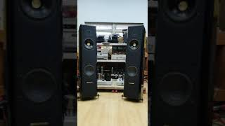 Sonus Faber With 300B PP-2