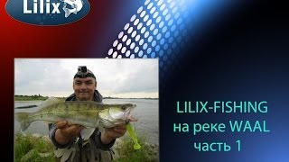 LILIX-FISHING на реке WAAL часть 1