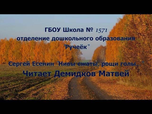 Изображение предпросмотра прочтения – МатвейДемидков читает произведение «Нивы сжаты, рощи голы...» С.А.Есенина