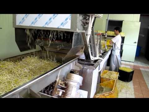 콩나물 세척 및 계량장치(Bean Sprouts Automatic A Syringe)