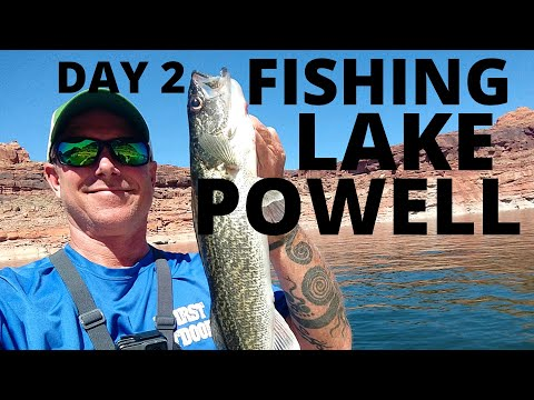 Fishing Lake Powell, Reopened!/ Late Spring Action, Day Two