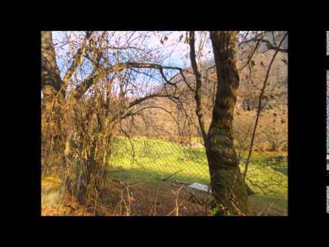 Нальчик Белая речка