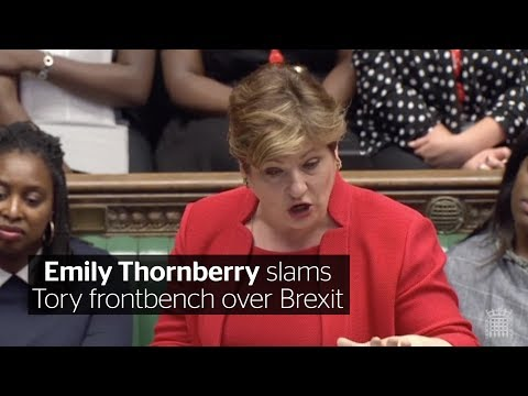 Labour's Emily Thornberry tears into the government over Brexit