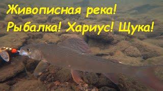 Рыбалка на живописной реке. Спининг, Хариус, Щука и просто отличная природа. Рыбалка на Урале 2020.