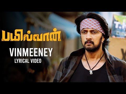 vinmeeney song lyrics bailwaan film