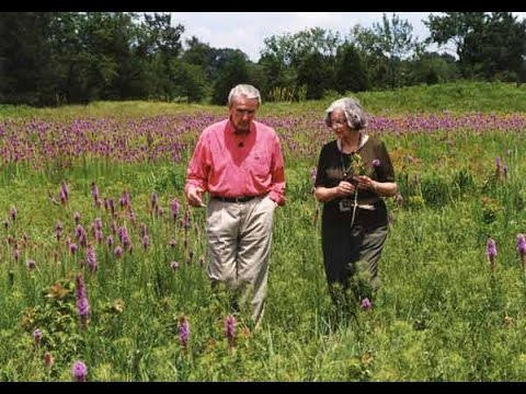 Arkansas' Natural Heritage