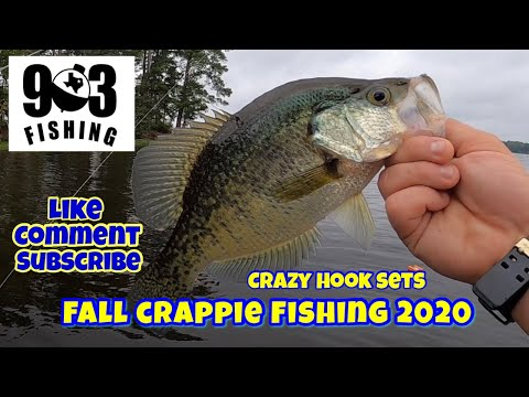 Fall Crappie Fishing 2020  Using Jigs & Minnows To Catch Fall Crappie 
