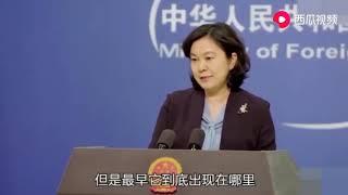 华春莹长文回应美国关于中国疫情信息反应不及时、信息不透明问题