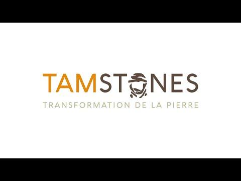 Présentation TAMSTONES