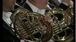sibelius symphony no 2 in d major op 43 mvt 4 bernstein wiener philharmoniker