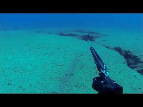 Spearfishing in Lebanon