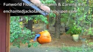 Floating Pumpkin Hanger Kits - Bird Feeder