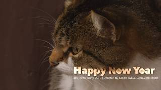 【玲玲微電影 SmileVlog】Happy New Year 2019 - 新年快樂!