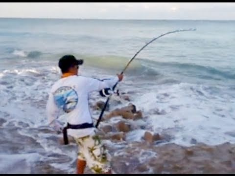 Big Game Fishing from Shore - YouTube