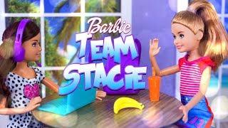 Unbox Daily: ALL NEW Barbie Team Stacie Dolls