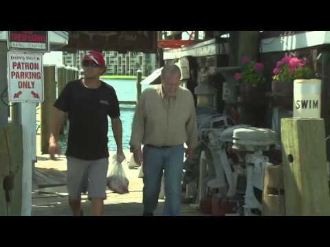 Secret Fishing Spot: Hidden Gems Of St.Pete Clearwater