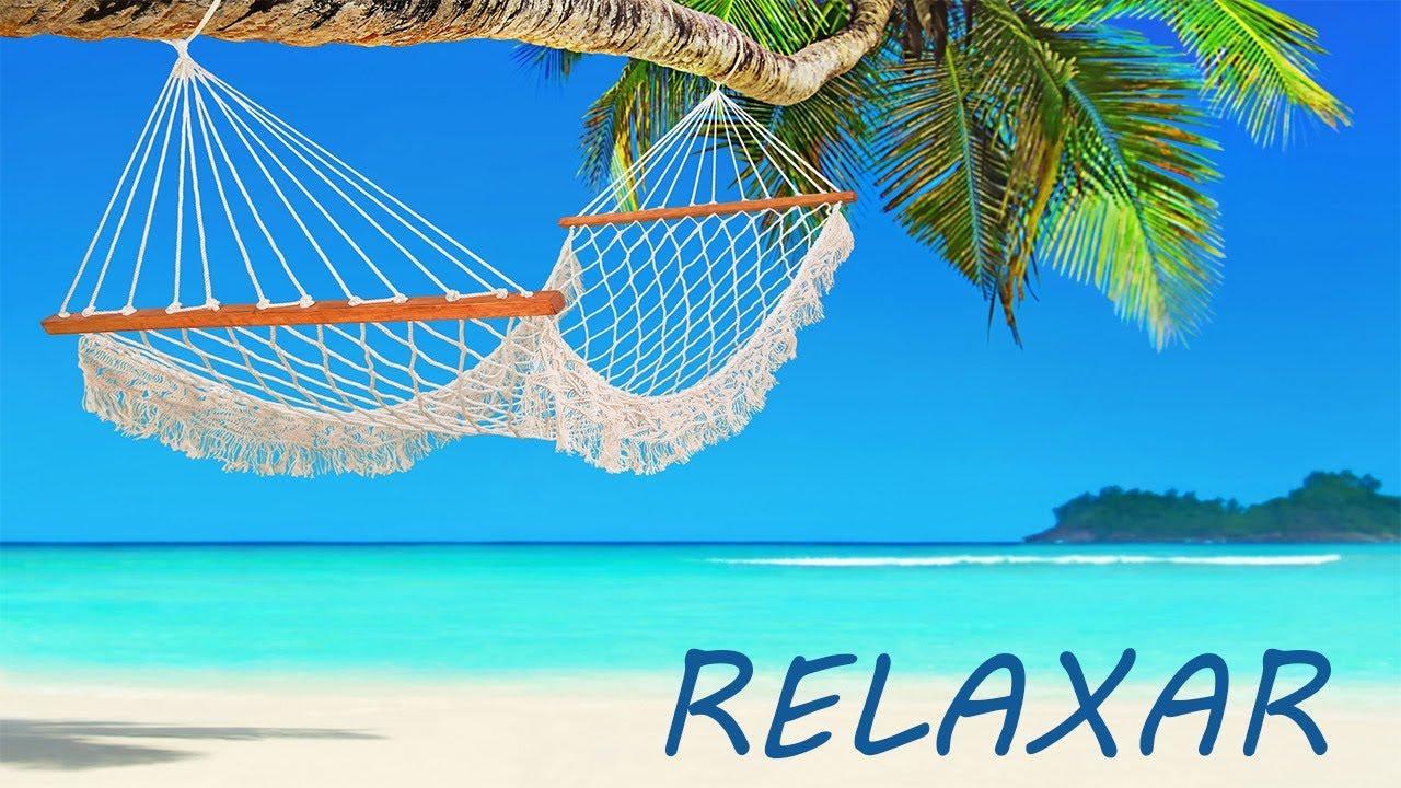 Live Música Relaxante E Natureza Paisagens Relaxar E Acalmar Youtube