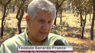 El Bosque La Primavera cumplió 36 años como área natural protegida