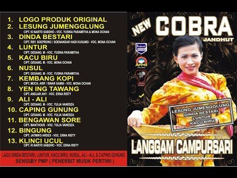 New Cobra - Bingung - Erna Rizty [ Official ]