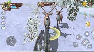 WildCraft Animal Sim Online 3D Android Gameplay #1 screenshot 4