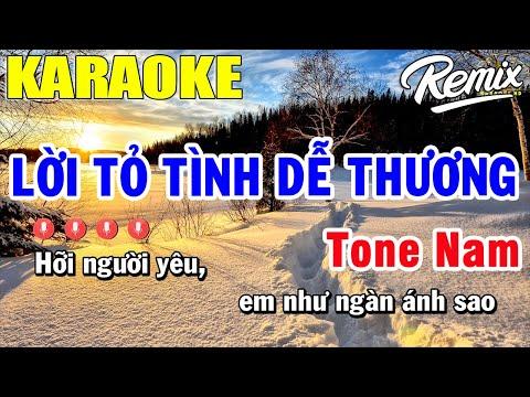 Lời Tỏ Tình Dễ Thương Karaoke Tone Nam | Trọng Hiếu