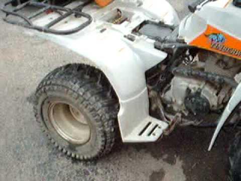 Yamaha Timberwolf 250 Project