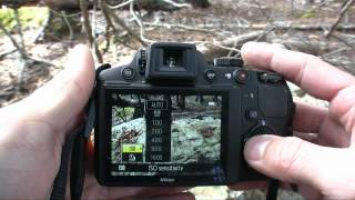 nikon Coolpix P510 Review - Giant Zoom!