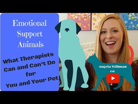 Emotional Support Animals   How Therapists Can and Can't Help