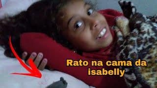 TROLLEI A ISABELLY COM UM RATO DE BRINQUEDO 😂😂